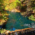 green autumn reflections by LoreLeft27