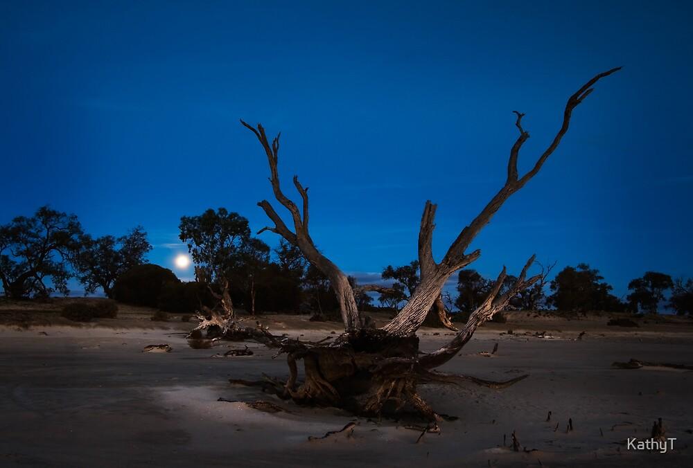 Moon rise on Bonney by KathyT