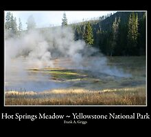 Hot Springs Meadow Five by FrankGImages