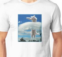 Longcat....is Long. Unisex T-Shirt