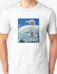 Longcat....is Long. T-Shirt