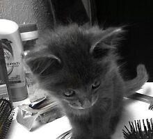 Sweet Kitty by beautifull8706