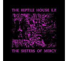 The Sisters Of Mercy - The Worlds End - The Reptile House Photographic Print