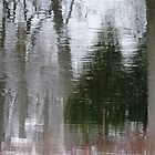 Wintery Reflections by enchantedImages