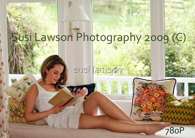 The Window Reader by susi lawson