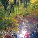 willow pond by LoreLeft27