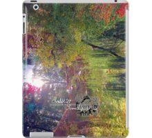 willow pond iPad Case/Skin