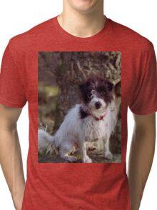 Murphy in the woods Tri-blend T-Shirt