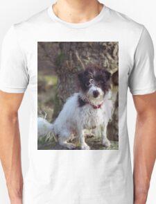 Murphy in the woods T-Shirt