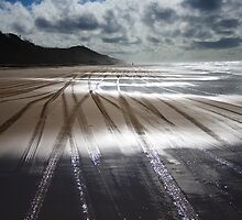 Tyre Tracks by DianaC