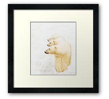 The 3 Bears of Churchill Framed Print