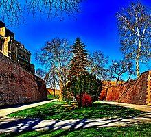 Fortress Kalemegdan Belgrade Fine Art Print by stockfineart