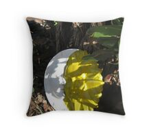 The Art of Embracing Sun and Moon on Earth Throw Pillow