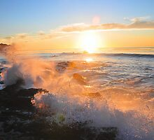 Pt. Vincente waves by Walt Conklin