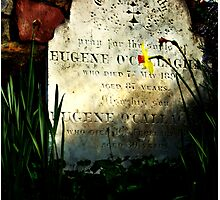 Gravestone in the spring. Photographic Print