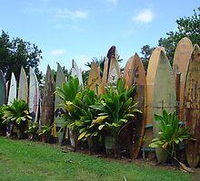 Surfboard Fence by aura2000