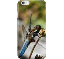Beautiful Motion iPhone Case/Skin