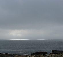 Lifting Fog, Cape Ann, MA by artwhiz47