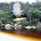 Whale Rock - Wilsons Prom 2 by lilleesa78