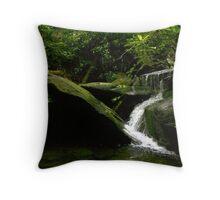 Cool cascade Throw Pillow