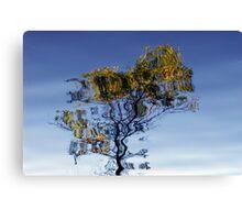 Autumn Reflection II Canvas Print