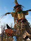 PrairieWind Scarecrow by evon ski