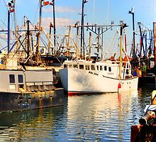 50 Shades colors running - Fishing boats by Poete100