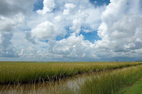 Cloudy Skies over the  Marsh by Bonnie T.  Barry