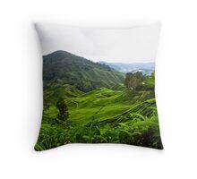 Tea Mountain Throw Pillow