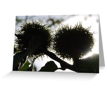 Chestnuts Greeting Card