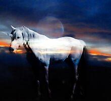 The Unicorn by laureenr
