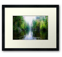 Swamp Creek Dream Framed Print