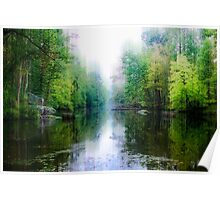 Swamp Creek Dream Poster
