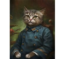 The Hermitage Court Confectioner Apprentice Cat  Photographic Print
