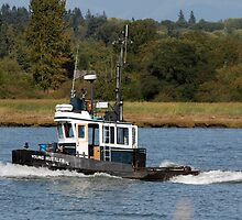 """Tugboat """"Young Hustler"""" by Wolf Read"""