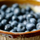 bokeh blueberries by Lys •