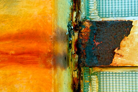 Window with a View by DebraLee Wiseberg