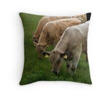 irish cows Throw Pillow