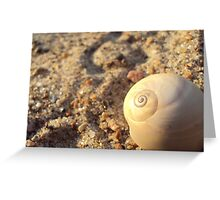 Empty Shell Greeting Card