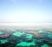 edge of the world (the great barrier reef) by Annabelle Evelyn