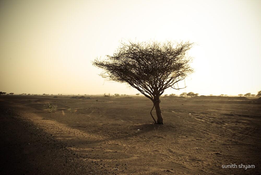 desolate by sunith shyam
