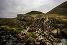 Sheepfold by David Robinson