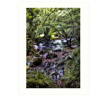 River Devon Art Print
