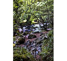 River Devon Photographic Print