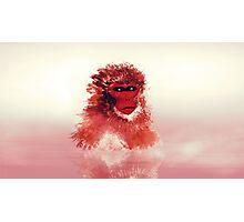 Vapor monkey Photographic Print