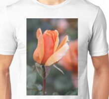 Abbaye de Cluny Hybrid Tea starting to open  Unisex T-Shirt