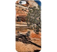 Mesquite Zion National Park iPhone Case/Skin