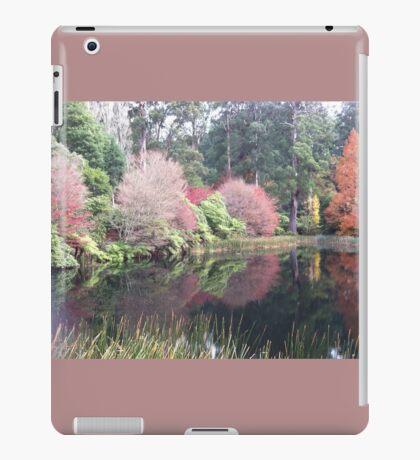 Scenic lake iPad Case/Skin