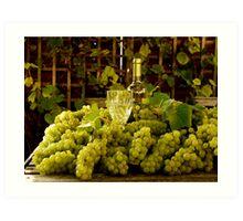 Grape Harvest Art Print