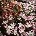 Tulip Garden with Flair by sailgirl